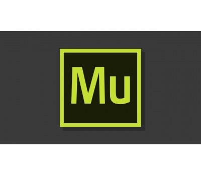 Курс создание Landing Page с нуля в программе Adobe Muse